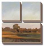 Harvest Fields Stretched Canvas Print by Megan Lightell