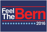 Feel The Bern 2016 Posters