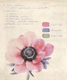 Botanical Study II Art by Belle Poesia