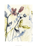 Flowing Stems I Limited Edition by Jennifer Goldberger