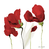 All Red Poppies II Prints by Lanie Loreth