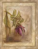 Plantano En Flor I Taide tekijänä Patricia Pinto