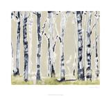 Parchment Birchline II Limited Edition by Jennifer Goldberger