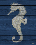 Antique Seahorse on Blue II Prints by Patricia Pinto