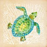 Sealife Turtle Posters af Julie DeRice