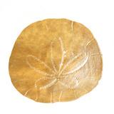 Gold Sand Dollar II (gold foil) Art by Jairo Rodriguez