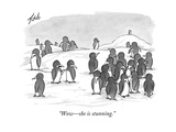 """Wowshe is stunning."" - New Yorker Cartoon Premium Giclee Print by Tom Toro"