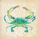 Sealife Crab Plakater af Julie DeRice
