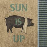 Rise & Shine Farm Fresh I Poster von Andi Metz