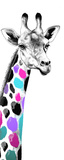 Multicolored Giraffe I Prints by Vivien Rhyan