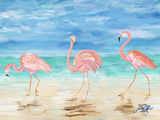Flamingo Beach II Art by Julie DeRice