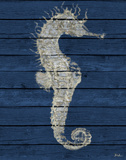 Antique Seahorse on Blue I Posters by Patricia Pinto