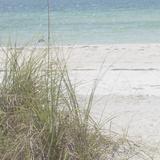 Ocean Air I Reprodukcje autor Susan Bryant