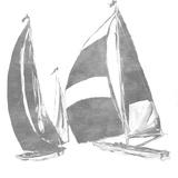 Full Sail Silver I (silver foil) 高画質プリント : ジェーン・スリヴカ