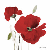 All Red Poppies I Posters by Lanie Loreth