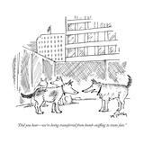 """Did you hearwe're being transferred from bomb-sniffing to trans fats."" - New Yorker Cartoon Premium Giclee Print by Mike Twohy"