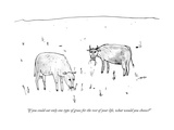 """If you could eat only one type of grass for the rest of your life, what w"" - New Yorker Cartoon Premium Giclee Print by Edward Steed"