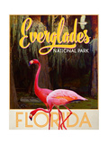 Everglades National Park Giclee Print