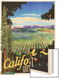 California - The Golden West Wood Print