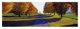 Autumn Road, Storm King Mountain, New York Posters by Richard Berenholtz