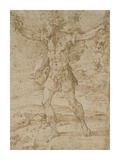 David with the Head of Goliath Posters by (Francesco Mazzola) Parmigianino