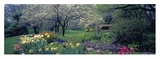 Country garden, Old Westbury Gardens, Long Island Prints by Richard Berenholtz