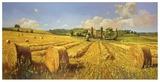 Campo in Toscana Plakater af Andrea Del Missier