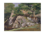 A View of the Valley of Rocks near Mittlach Giclee Print by James Arthur O'Connor