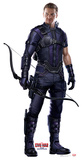 Hawkeye - Captain America: Civil War Cardboard Cutouts