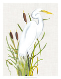 Waterbirds & Cattails III Giclee Print by Naomi McCavitt