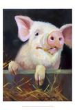 Farm Club II Prints by Carolyne Hawley