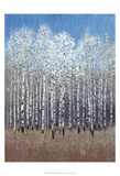 Cobalt Birches I Prints by Tim OToole