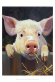 Farm Club I Posters by Carolyne Hawley