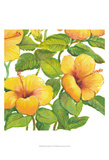 Watercolor Hibiscus IV Art by Tim OToole