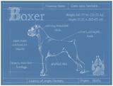 Blueprint Boxer Kunst van Ethan Harper
