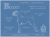 Blueprint Boxer Poster by Ethan Harper