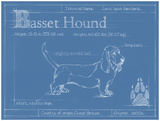 Blueprint Basset Hound Prints by Ethan Harper