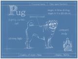 Ethan Harper - Blueprint Pug Obrazy