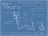 Blueprint Westie Posters by Ethan Harper