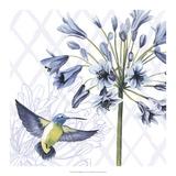 Hummingbird Dance II Posters by Grace Popp