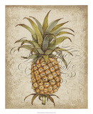 Pineapple Study II Posters by Tim OToole
