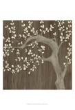 Driftwood Cherry II Prints by June Vess