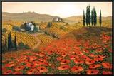 Hills of Tuscany II Framed Canvas Print by Steve Wynne