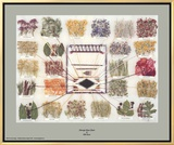 Navajo Dye Chart Framed Canvas Print by Ella Myers