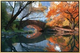 Gapstow Bridge, Fall Framed Canvas Print by Michael Chen