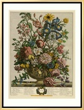 June Framed Canvas Print by Robert Furber