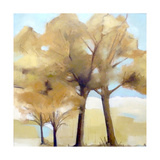 Trees Giclee Print by Ana Bianchi