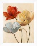 Poppy Palette II Framed Canvas Print by  Nan