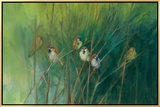 Summer Sparrows Framed Canvas Print by Ellen Granter
