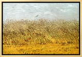 The Wheat Field Framed Canvas Print by Vincent van Gogh